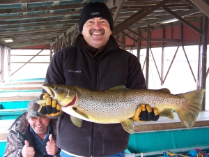Danny 2011 brown trout.