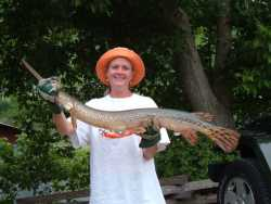 Gar fish-Buffalo River-Cotter
