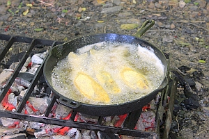 trout                             frying